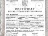 certificat-atestat
